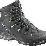 Topánky Salomon QUEST 4D 2 GTX ® W 370714
