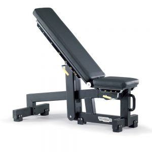 TechnoGym Pure Adjustable Bench