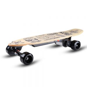 Skatey 150L wood art
